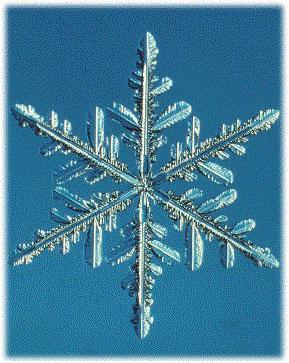 雪結晶のパターン変化の特徴は、温度による晶癖変化と過飽和度による安定成長から不安定成長への変化に